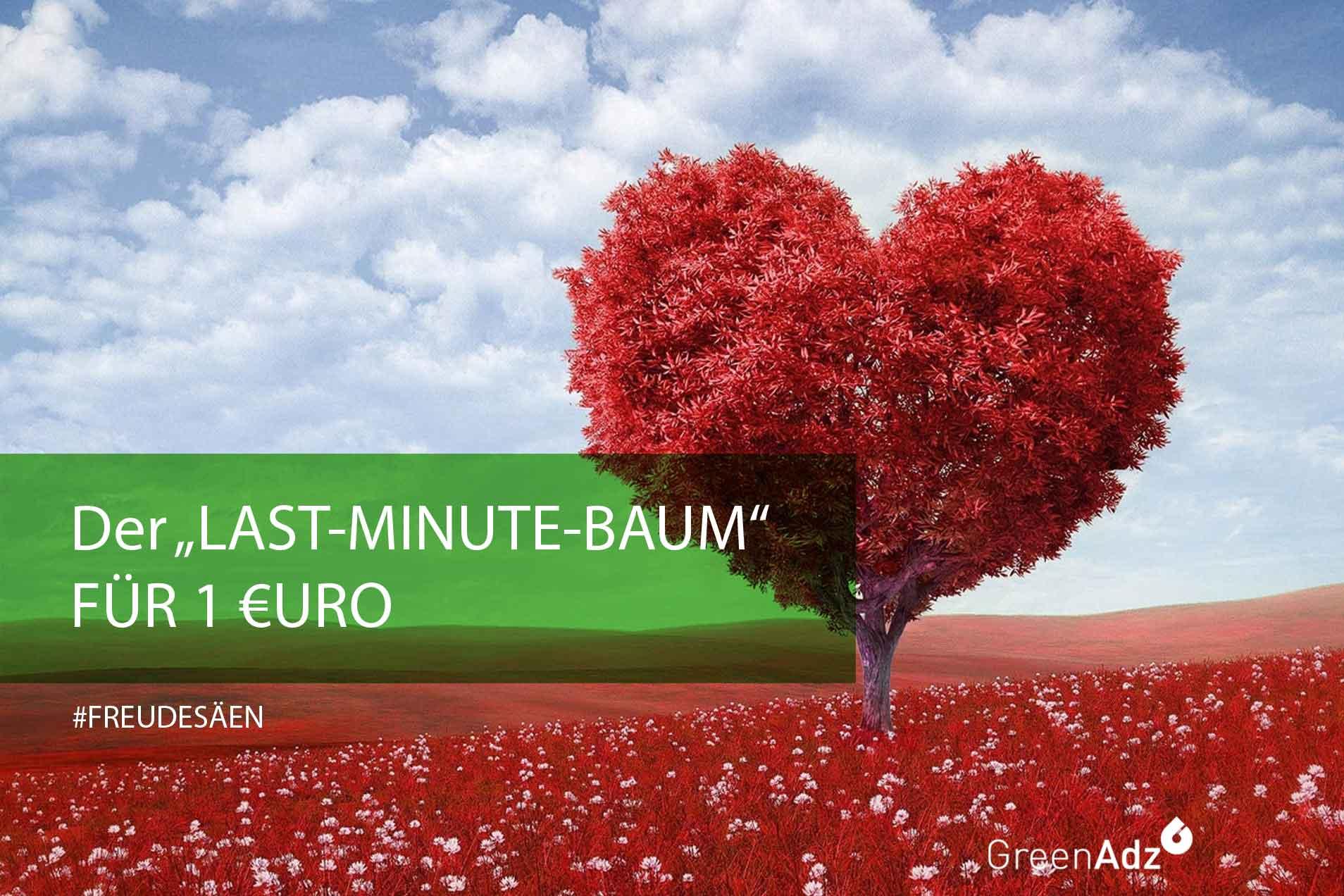 #MehrFreudeanMafo #LastMinuteBaum #Freudesäen